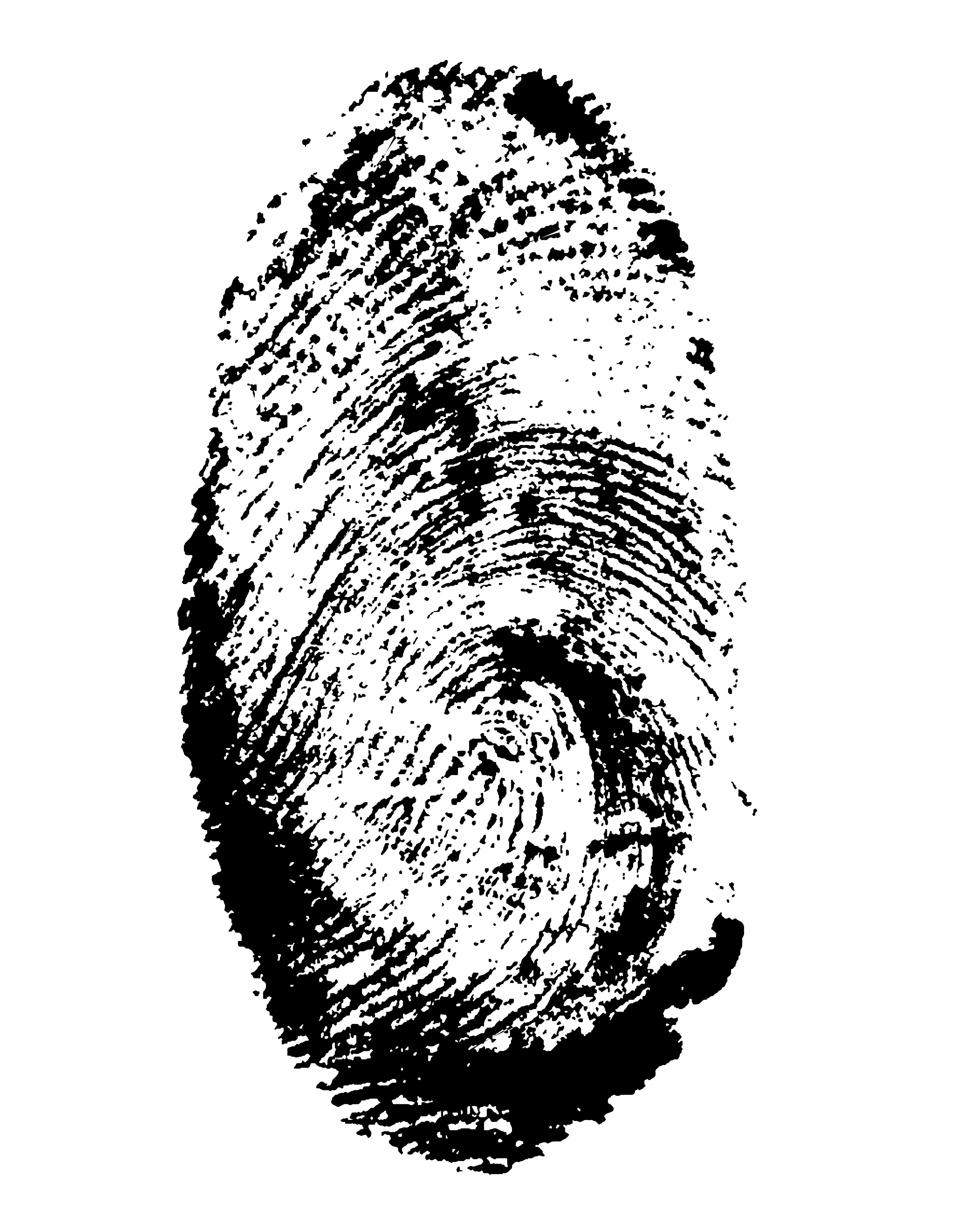CSI for HR? Forensic HR Workforce Planning Template | Visier Inc.