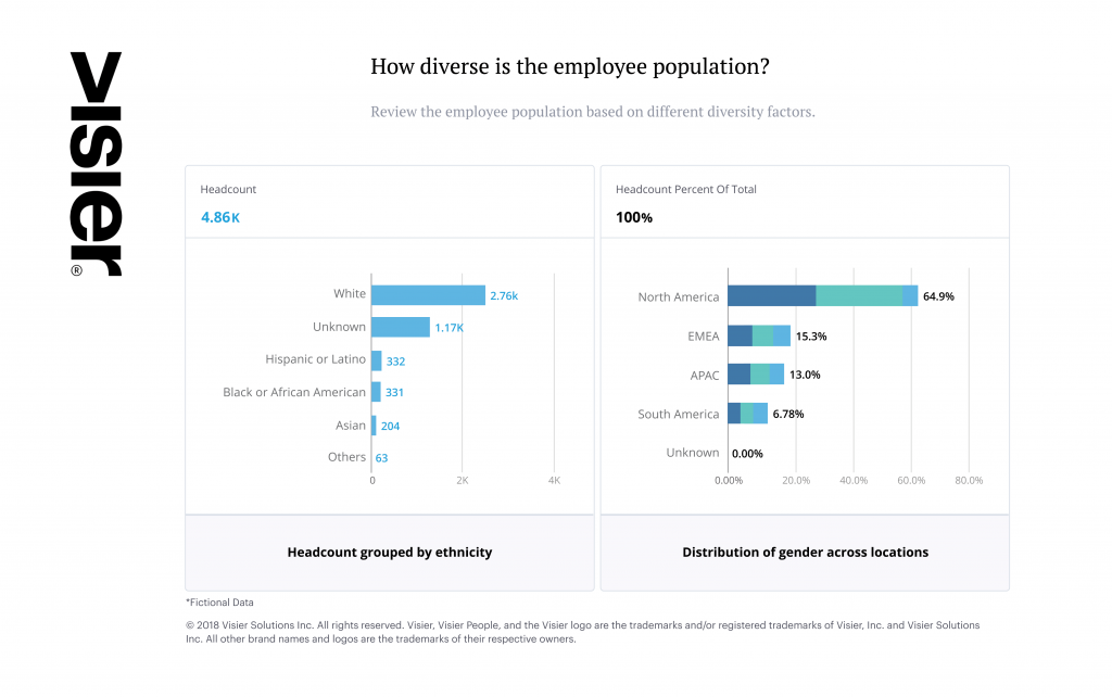 Data visualization showing the breakdown of diversity in a fictional organization's workforce