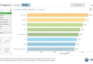 Data visualization showing overall employee engagement rates in a fictional organization