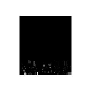 NetApp-black